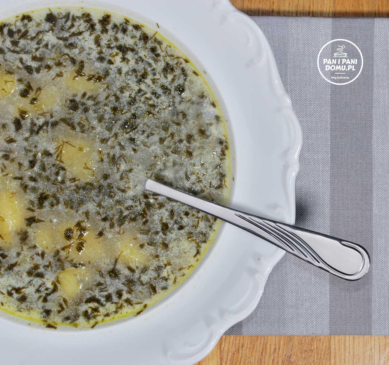 zupa-koperkowa-2