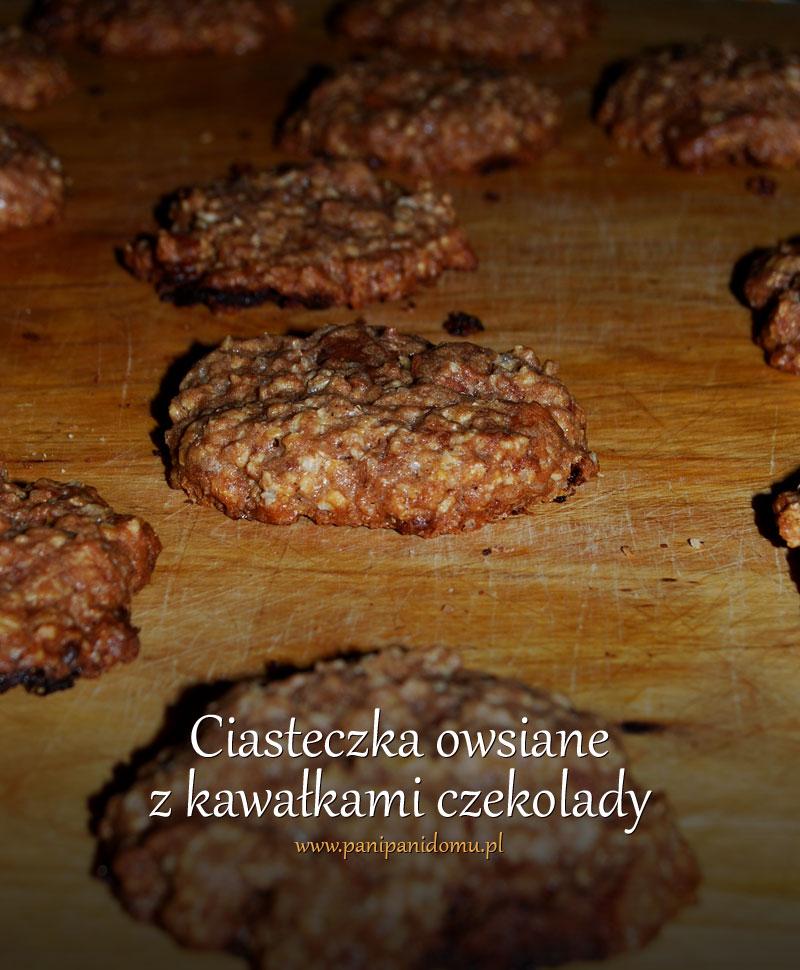 ciasteczka-owsiane-z-kawalkami-czekolady